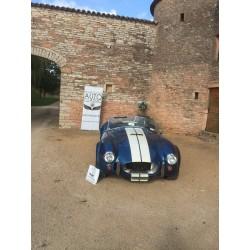 Cobra Contemporary Classic , bleu , moteur V8 7litres Ford , à vendre en france