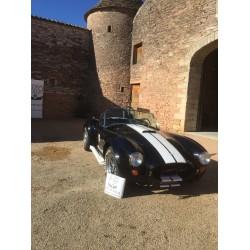 cobra Butler noir moteur V8 Ford Side oiler à vendre