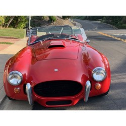 AC cobra, North American...