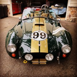 Cobra Butler Racing, V8...