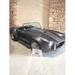 cobra shell valley a vendre bourgogne auto classic