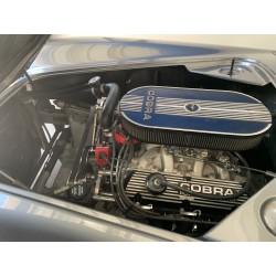 moteur V8 ford réplique Ac cobra  à vendre en France