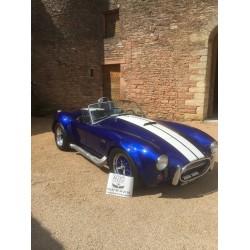 cobra réplique ERA bleu Bigblock block ford