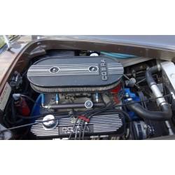 Moteur V8  Bigblock 427 FE shelby cobra replique de la marque LA.Exotic à vendre